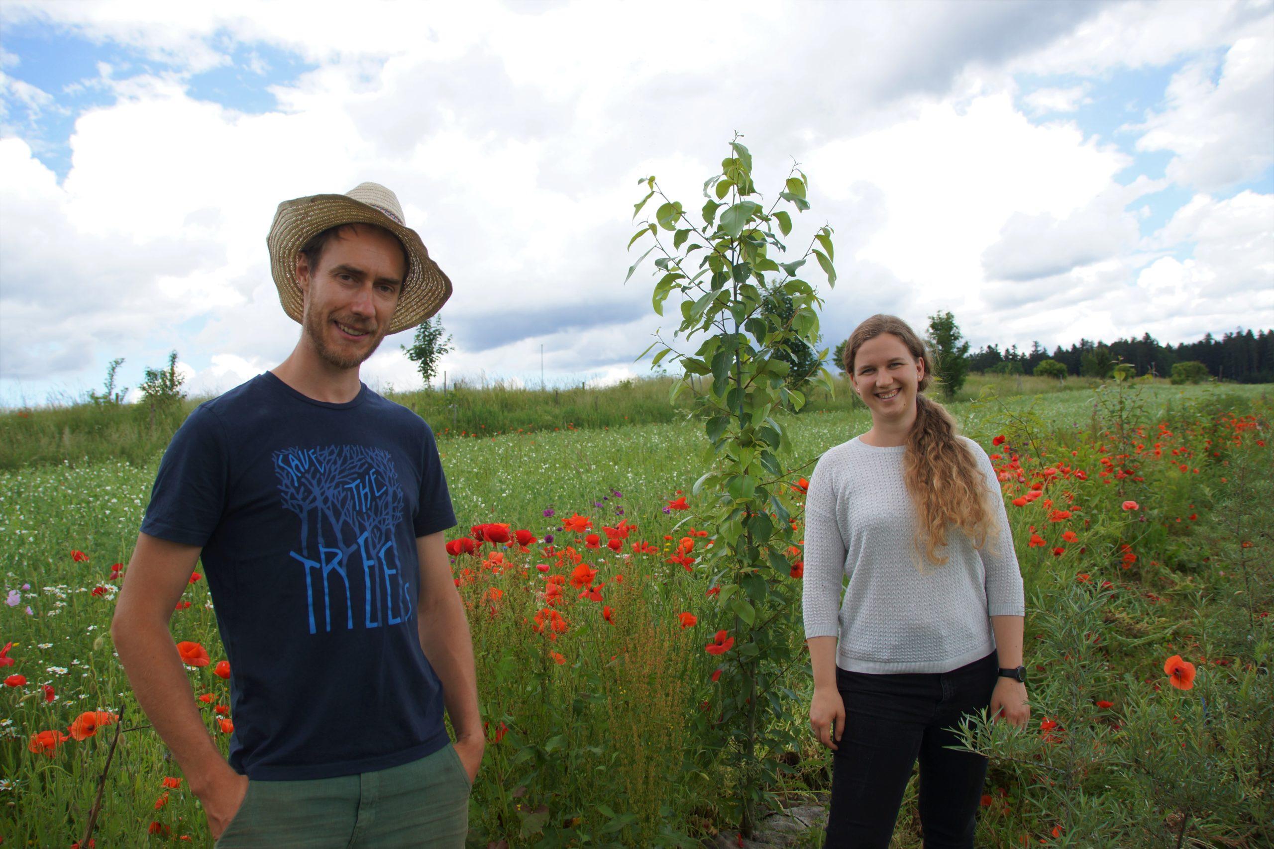 Klimaschutz und Ertragssteigerung – kein Widerspruch im Hof Sonnenwald